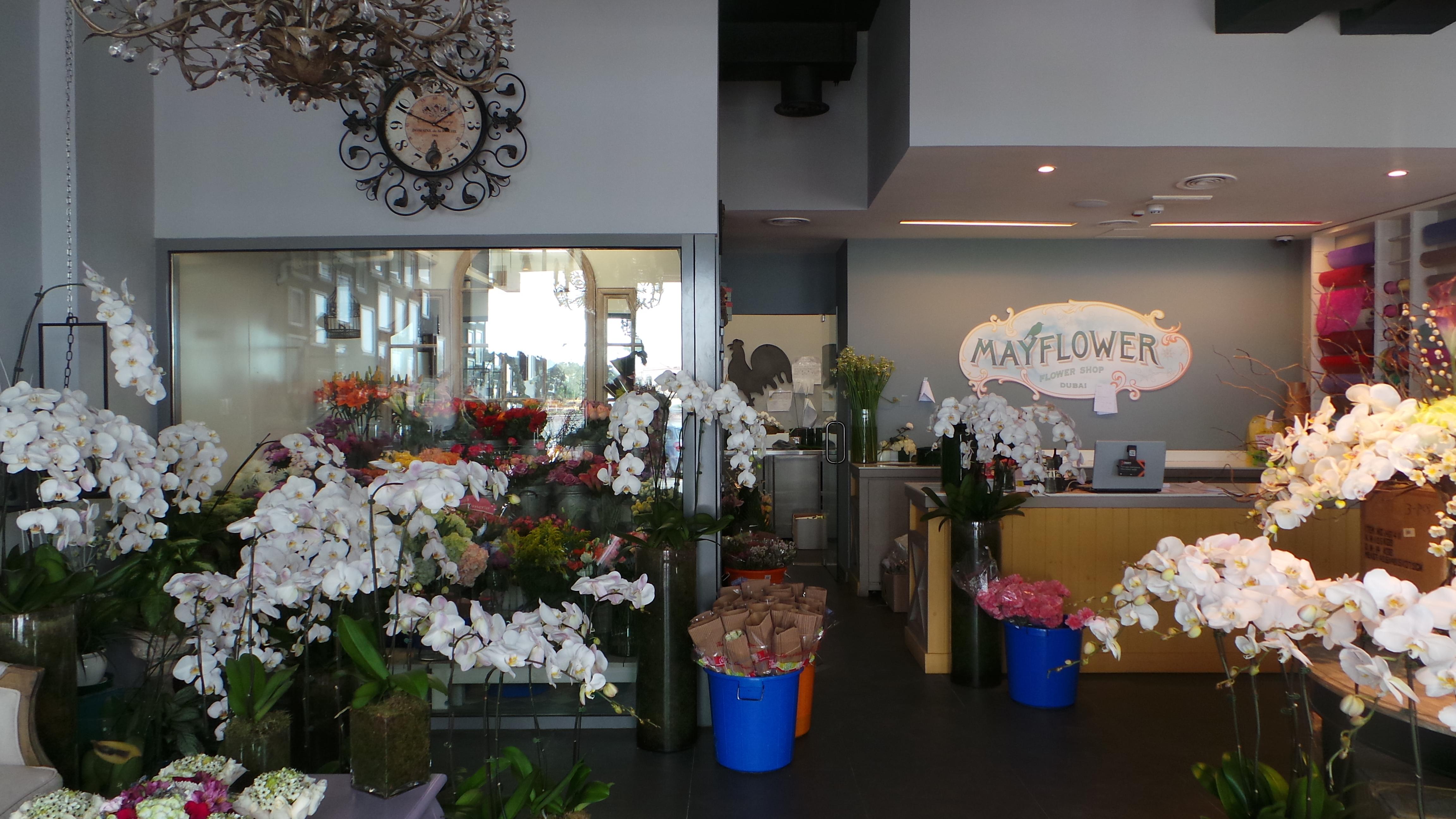 Mayflower flower shop the scoop dxb mayflower flower shop izmirmasajfo